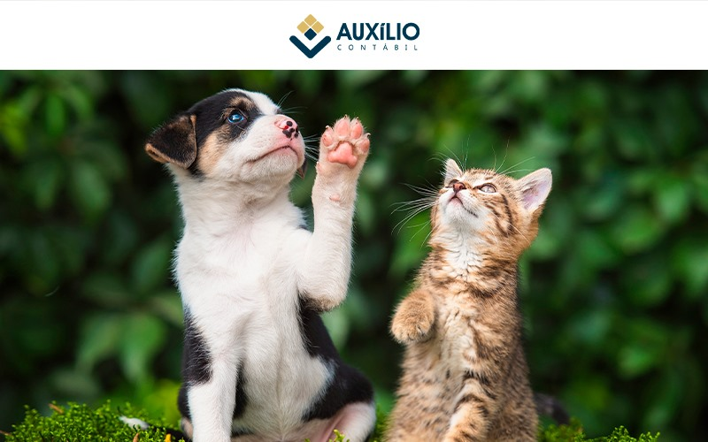 Como Montar Um Pet Shop – Auxilio Contábil